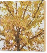 Winter Final Color Wood Print