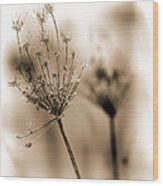 Winter Flowers II Wood Print