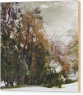Winter Foliage Wood Print