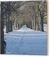 Winter Foot Prints Wood Print