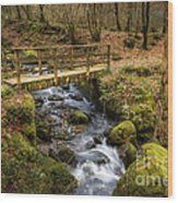 Winter Footbridge Wood Print