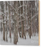 Winter Forest Abstract II Wood Print