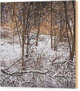 Winter Forest Wood Print by Elena Elisseeva