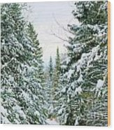 Winter Forest Landscape Wood Print