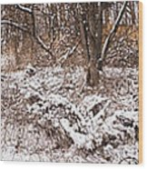 Winter Forest Panorama Wood Print