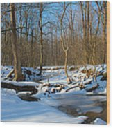 Winter Forest Stream Wood Print