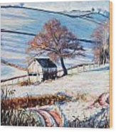 Winter Frost Wood Print by Tilly Willis