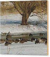 Winter Geese - 01 Wood Print