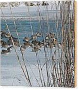Winter Geese - 04 Wood Print
