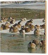 Winter Geese - 06 Wood Print