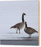 Winter Geese Wood Print
