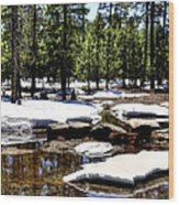 Winter Gives Way To Spring 32626 Wood Print