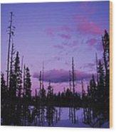 Winter Glow Wood Print by Angi Parks