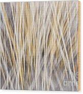 Winter Grass Abstract Wood Print