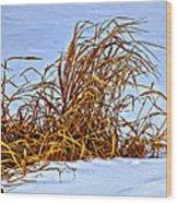 Winter Grasses II Wood Print