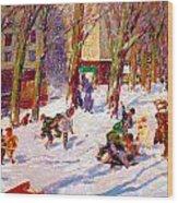 Winter High Bridge Park Wood Print