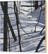 Winter Hillside Wood Print