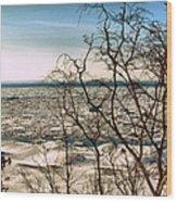 Winter Ice On Lake Michigan Wood Print