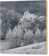 Winter - IIi Wood Print by Akos Kozari