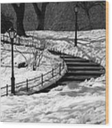Winter In Central Park Wood Print