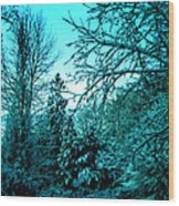 Winter In Denmark Wood Print
