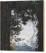 Winter In Grand Lake Co 1 Wood Print