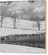 Winter In Kentucky Wood Print