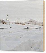 Winter In Ludington Wood Print