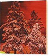 Winter In Minneapolis Wood Print