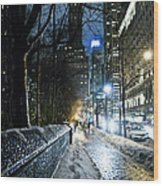 Winter In New York City Wood Print