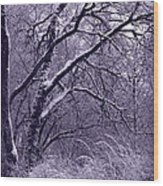 Winter In Purple Wood Print