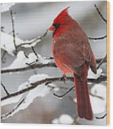 Winter In Red Wood Print
