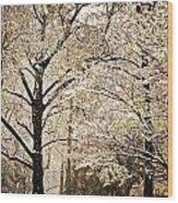 Winter In St. Louis Wood Print by Marty Koch