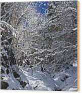 winter in the Bavarian alps 2 Wood Print