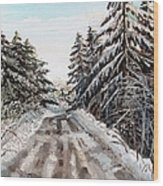 Winter In The Boons Wood Print by Shana Rowe Jackson