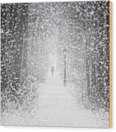 Snowing In The Forrest Wood Print