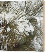 Winter In The Heartland 10 Wood Print