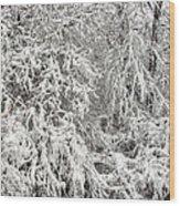 Winter In The Heartland 12 Wood Print