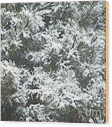 Winter In The Heartland 2 Wood Print
