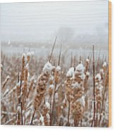 Winter In The Heartland 6 Wood Print