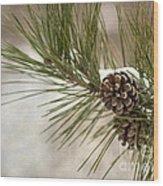 Winter Interlude Wood Print by Evelina Kremsdorf