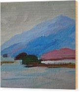 Winter Islands - Mdi Wood Print