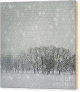 Winter Wood Print by Jelena Jovanovic