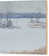 Winter Lake And Cedars Wood Print by Garry McMichael
