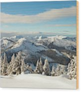Winter Landscape In British Columbia Wood Print