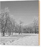 Winter Landscape In Bw Wood Print