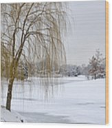 Winter Landscape Wood Print by Julie Palencia