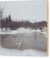 Winter Landscape With Trees And Frozen Pond Wood Print by Matthias Hauser