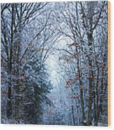 Winter Lane Wood Print
