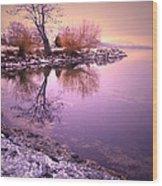 Winter Light Reflected Wood Print